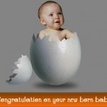 Top Baby's Name Prediction for 2013