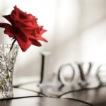 The Power of Scent in your love and relationship life
