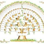 Step by Step Guide to Create a Family tree Online