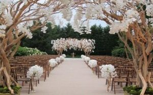 hire wedding planner