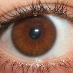 Eye color and brown eyes makeup