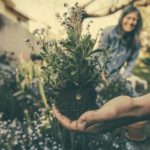 How to Create a Healthy Garden for the Whole Family to Enjoy