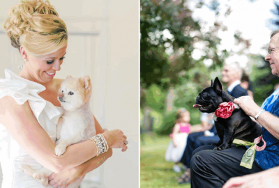 Incorporating Your Dog Into Your Wedding